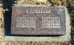 Dennis W Wagstaff