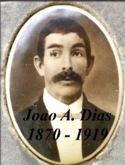 Joao A Dias