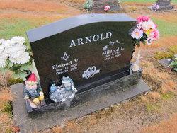 Elwood V. Arnold
