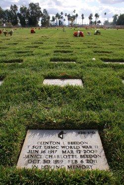 Clinton L Beedon