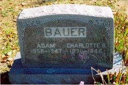 Charlotte Belle <i>Jones</i> Bauer