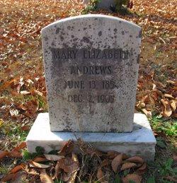 Mary Elizabeth <i>Wood</i> Andrews