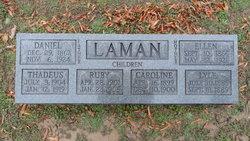 Daniel H. David Laman