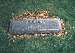 Ernest Paul Elmer Brostrom