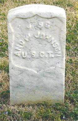 Andrew Johnson, Jr