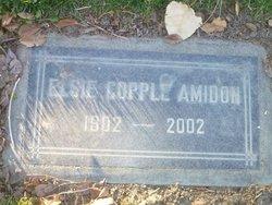 Elise Copple Amidon