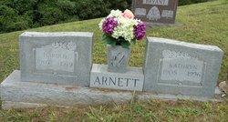 Harold Arnett