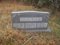 Little Sister Hazlewood