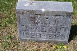 Baby Brabant