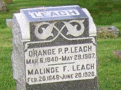 Orange P.P. Leach