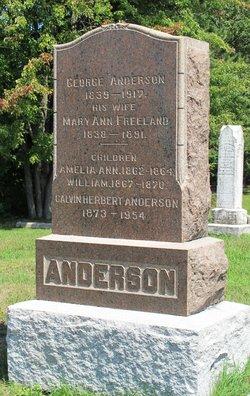 Amelia Ann Anderson