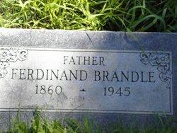 Ferdinand Fred Brandle