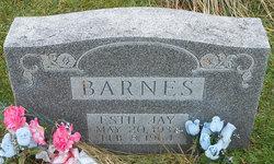 Estil Jay Barnes
