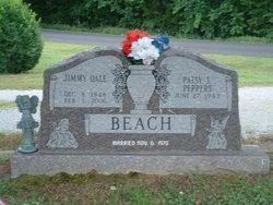 Jimmy Dale Beach