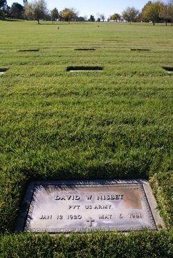 David W Nisbet