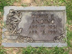 Curtis F. Anding