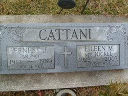 Eileen Marie <i>Nickel</i> Cattani