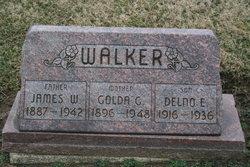 Golda G. Goldie <i>Ginn</i> Walker