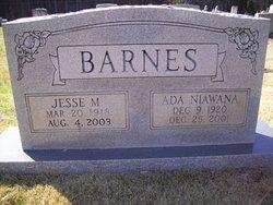 Jesse M Barnes