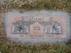 Carl Reiche Adams