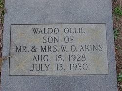 Waldo Ollie Akins