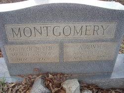 Aaron Thomas Tut Montgomery