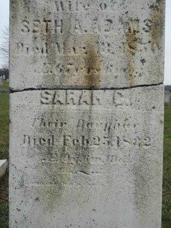 Sarah C Adams
