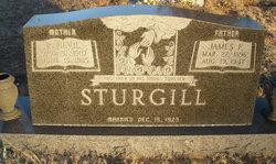James Frank Sturgill