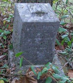 Walden Abbott