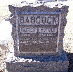 Martha E <i>Laymon</i> Babcock