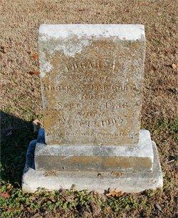 Edgar H. Curtis