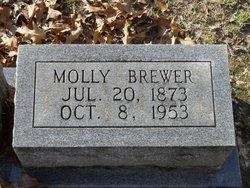 Mary Melissa Molly <i>Harvison</i> Brewer