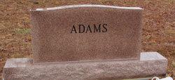 Hiram W. Adams