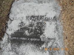 Julius Wesley Adams