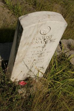 August Fernandez