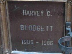 Harvey Charles Blodgett