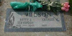Elizabeth J Betty <i>Stevenson</i> Wilson