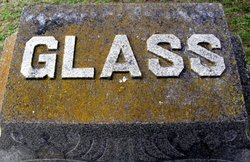 Fidelia <i>Stevens</i> Glass