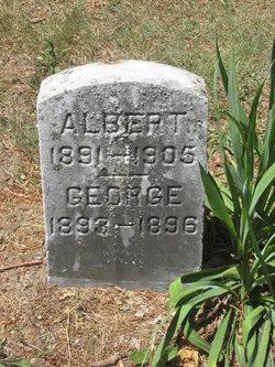 Albert L Hastey