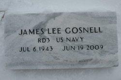 James L Gosnell