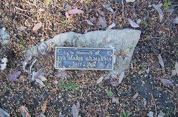 Eva Marie Eve <i>Ansted</i> Gilmartin