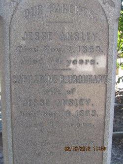 Catherine Louise Banks <i>Urquhart</i> Ansley