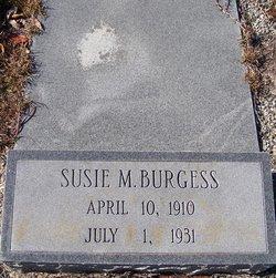 Susie M Burgess