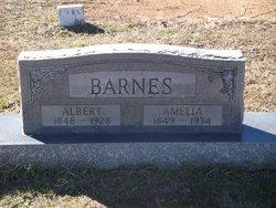 Albert Barnes