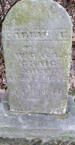 Carrie E. Craig