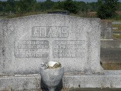 Fannie E <i>Pitts</i> Adams