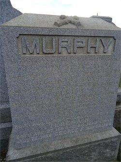 Henry J. Murphy