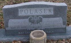 Charles Polasek