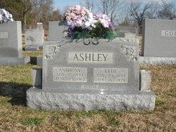 Anthony Ashley