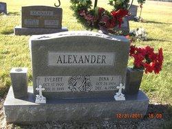 Dina J Alexander